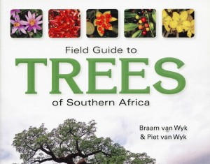 field_guide_to_trees002a