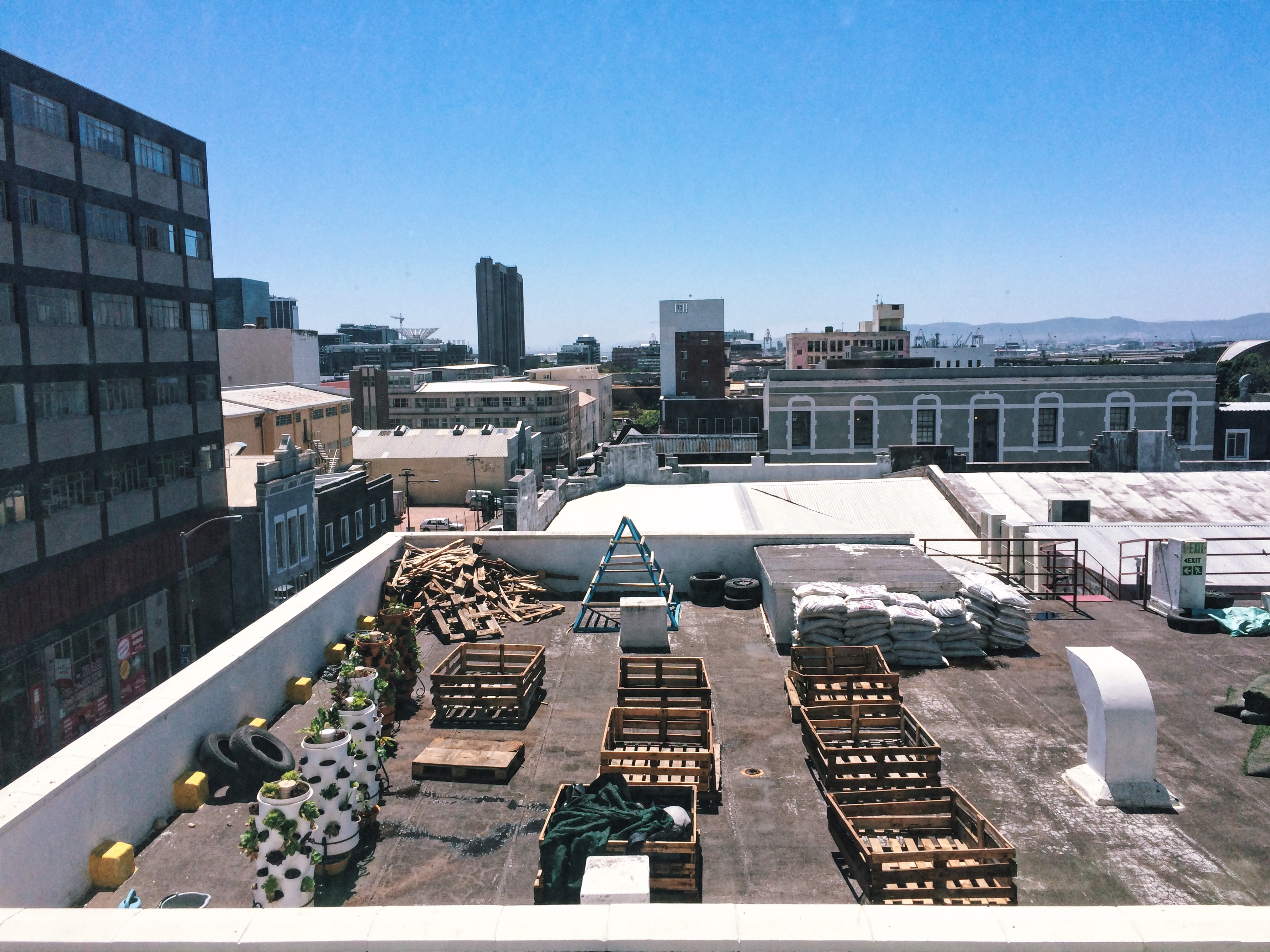 Beginnings of a rooftop garden - 75 Harrington Street, Cape Town