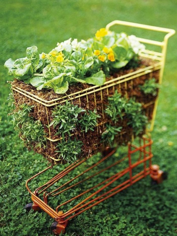 Shopping Cart Garden