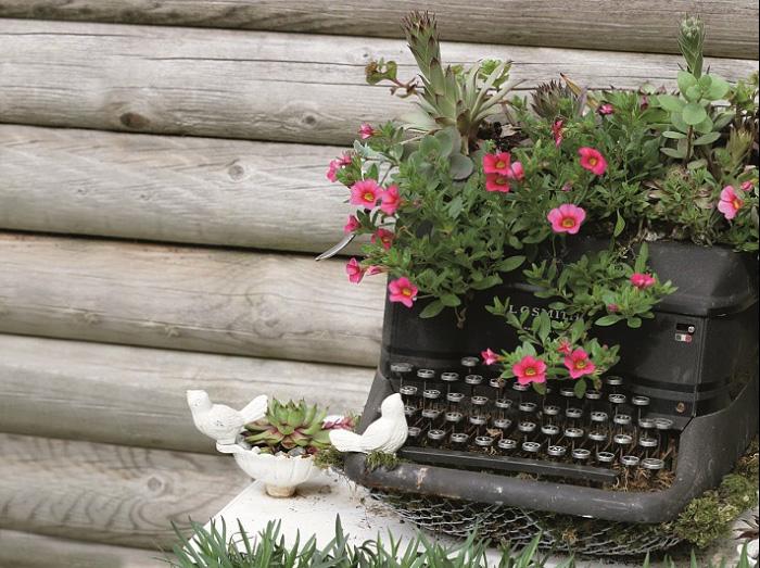 Typewriter Garden