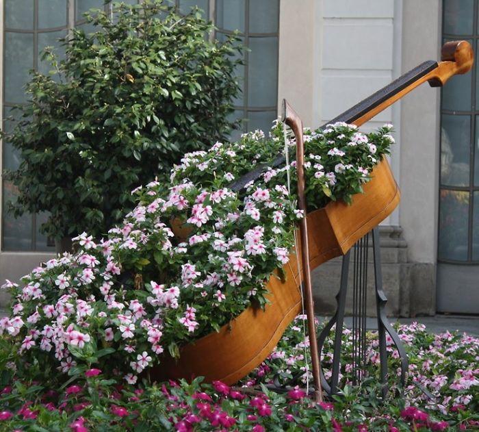Cello Garden