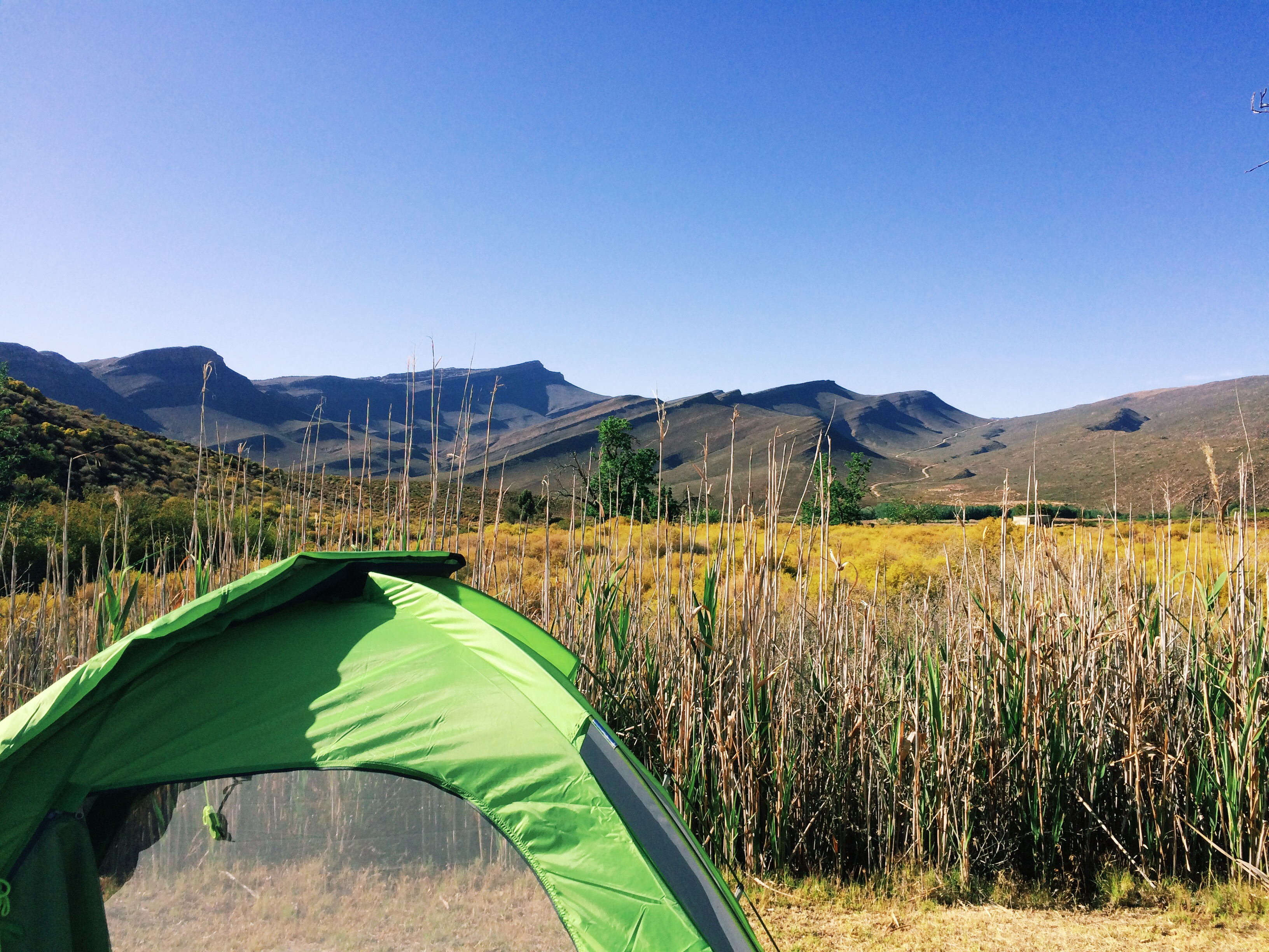 A room with a view: My tent overlooking the Cederberg mountains - Cederberg Oasis